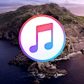 How to prepare for macOS Catalina by organizing your iTunes library